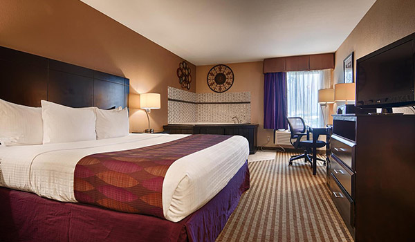 Bayou Inn Louisiana - King Suite Handicap